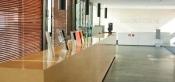 Decoración en madera natural de recepciones y zonas de oficinas